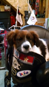 Charlie in the saddle on his Harley-Davidson